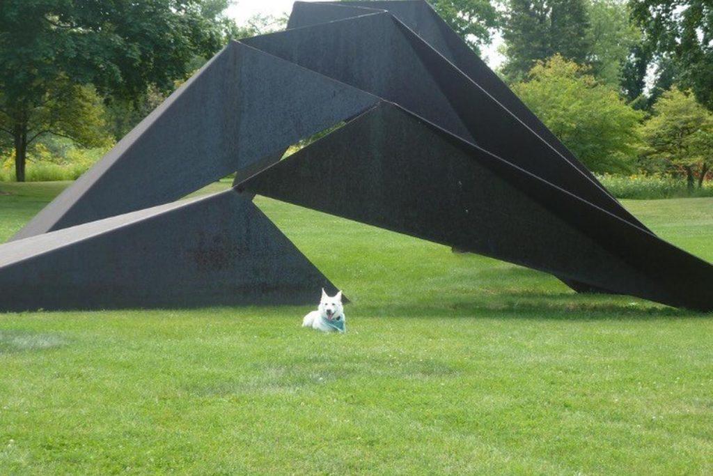 Lynden Sculpture Garden Dog Days